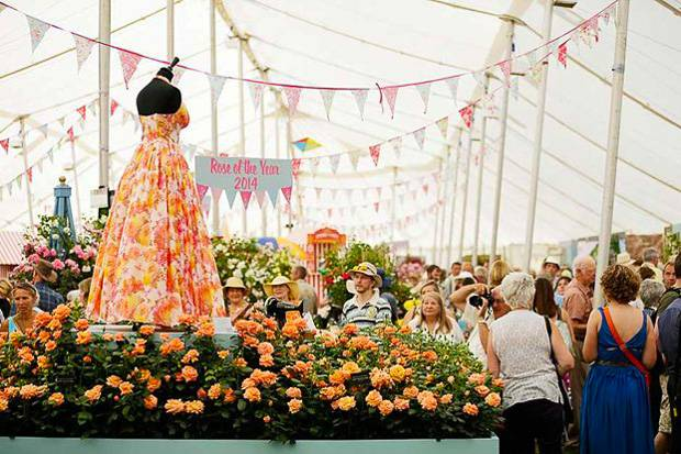 Image of flowers at Hampton Court Flower Festival.
