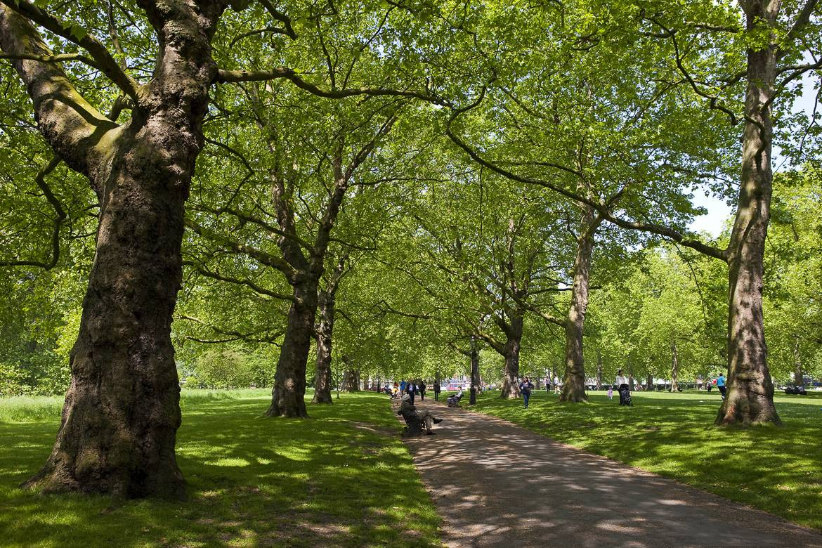 Image of Green Park