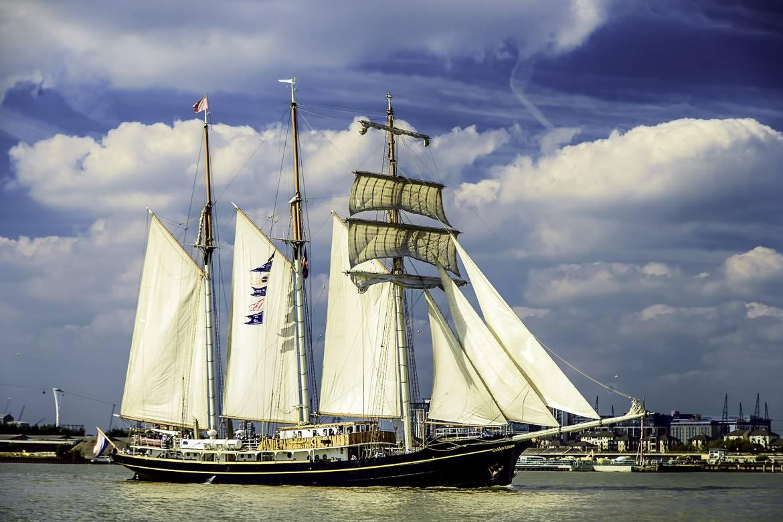 Image of Tall Ships Regatta