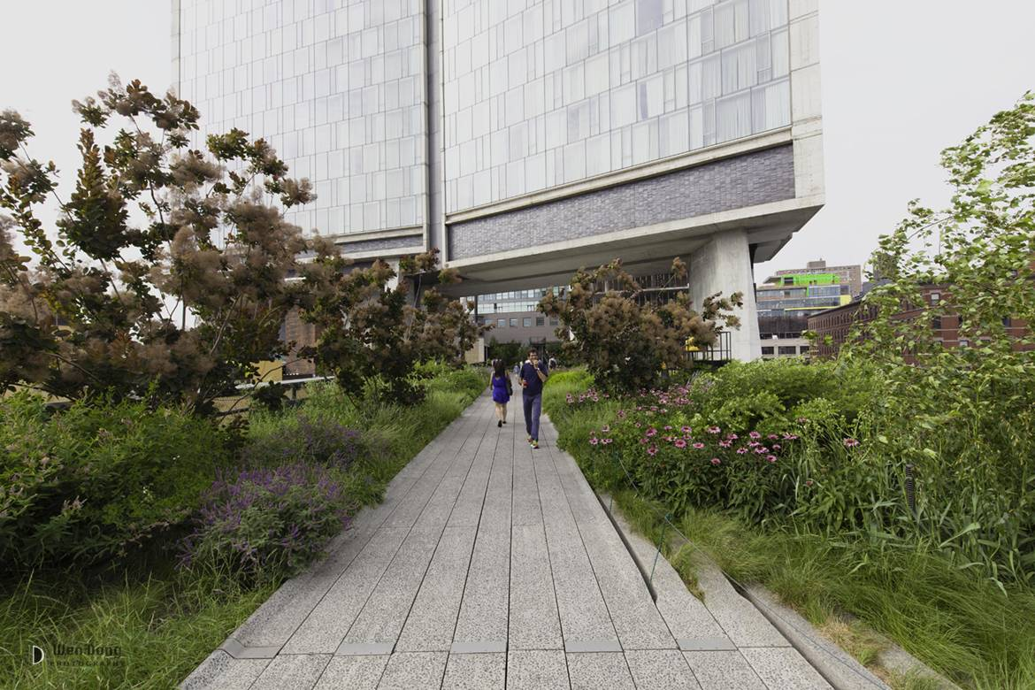 Image of the High Line underneath the Standard Hotel