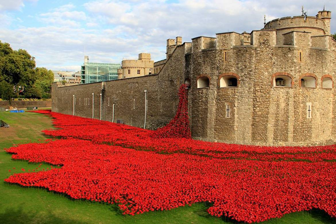 Image of The Tower of London with red poppies