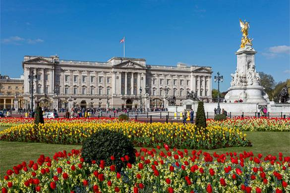 Image of Buckingham Palace with colorful flower beds