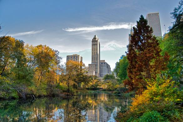 Image of lake in Central Park with buildings in the background