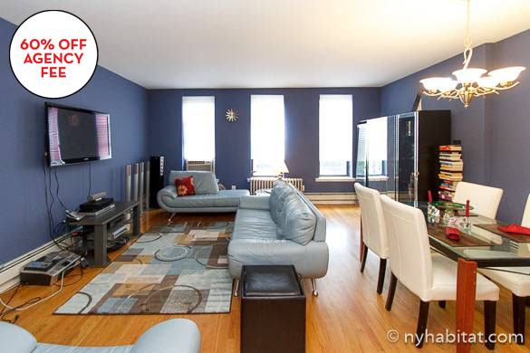 Image of sofas in the living room of Harlem two bedroom apartment NY-15873