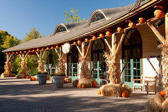 Image of pavilion with fall decorations of hay, corn husks and pumpkins at NY Botanical Garden