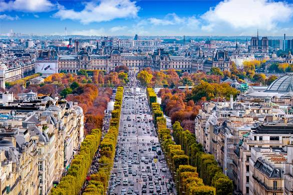 Image of a boulevard lined with trees in autumn colors and Haussmannian buildings