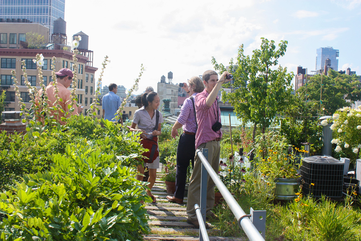 Image of people walking through a landscaped rooftop garden