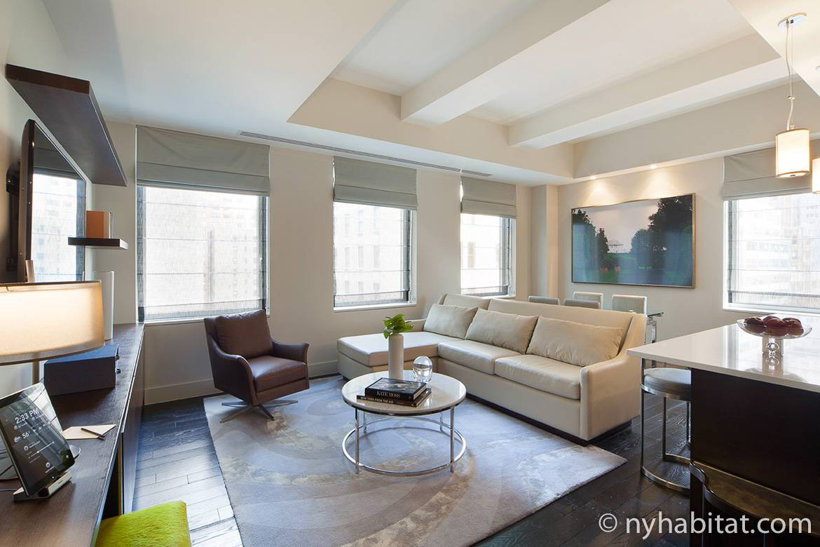 Image of living area of NY-16718 with sofa, chair, windows and dining table in the background.