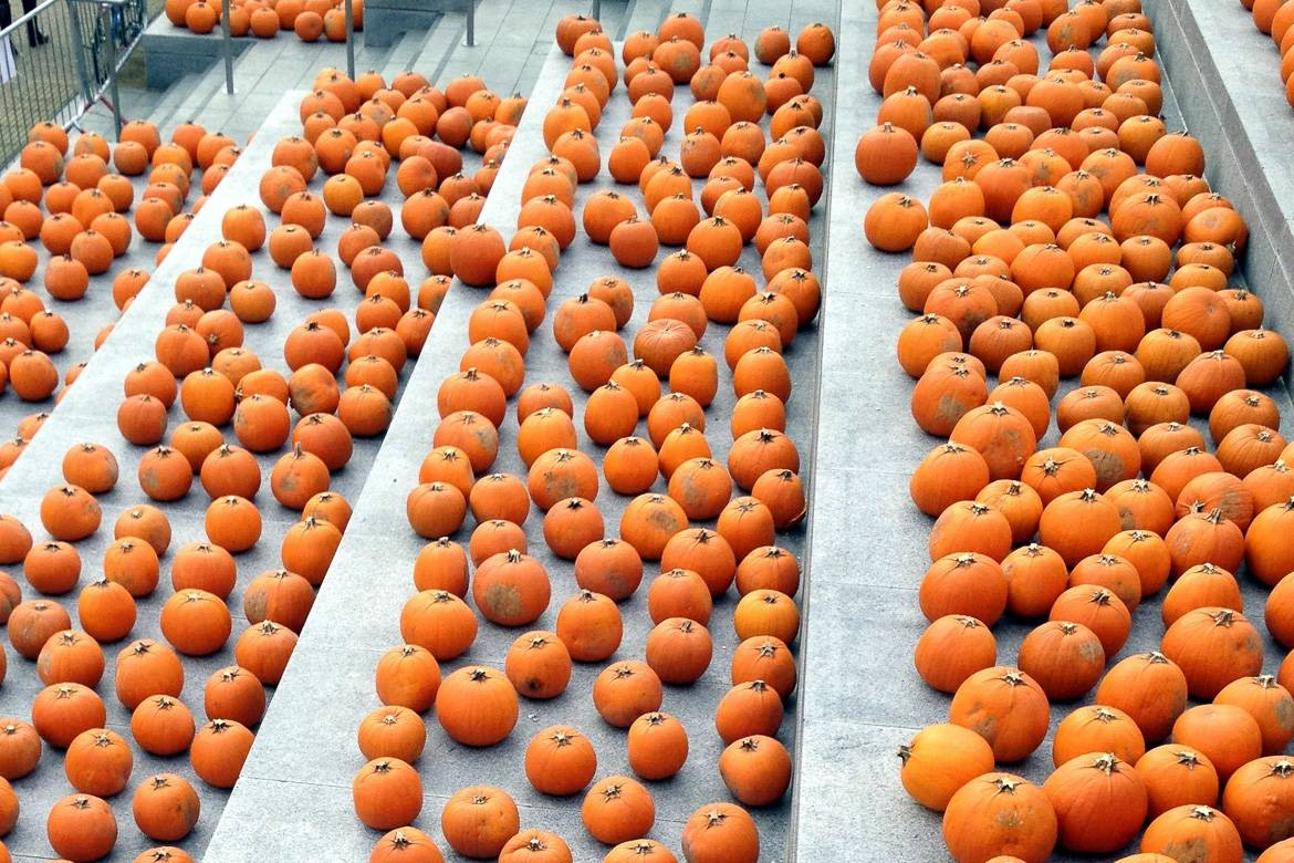 Image of pumpkins on the stairs at King's Cross Station.