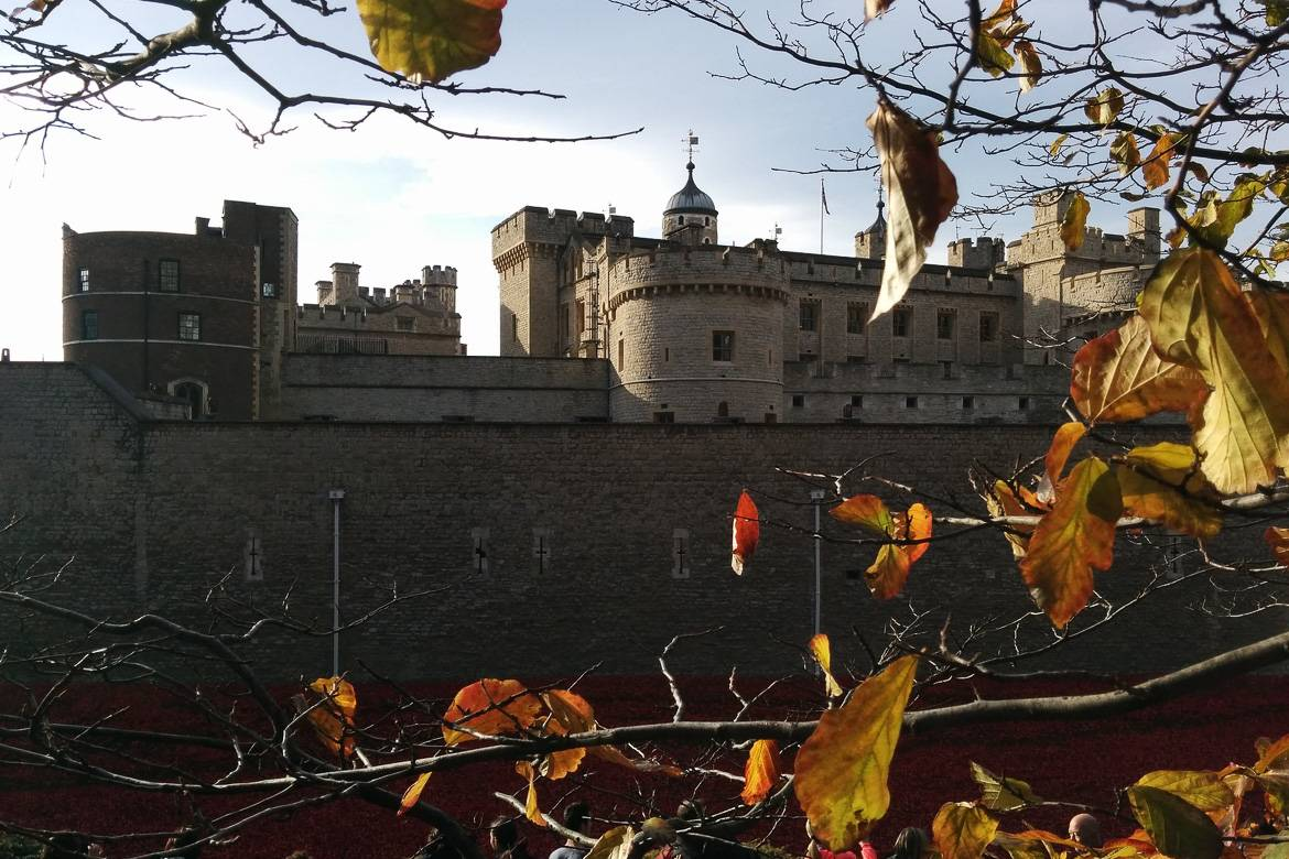Image of the Tower of London framed by fall leaves.
