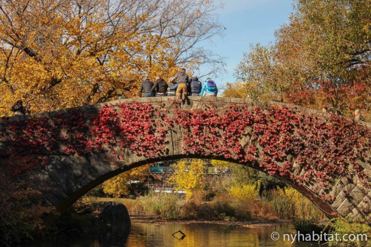 Image of a group of people posing for a photo on a bridge in Central Park in autumn.