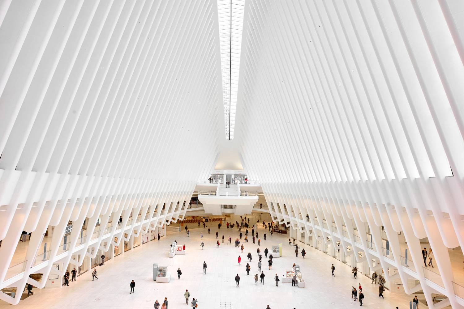 Image of the interior of the Oculus.