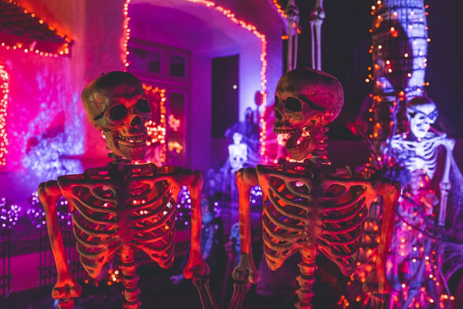 An image of glowing skeletons and Halloween lights at night in the Bronx.