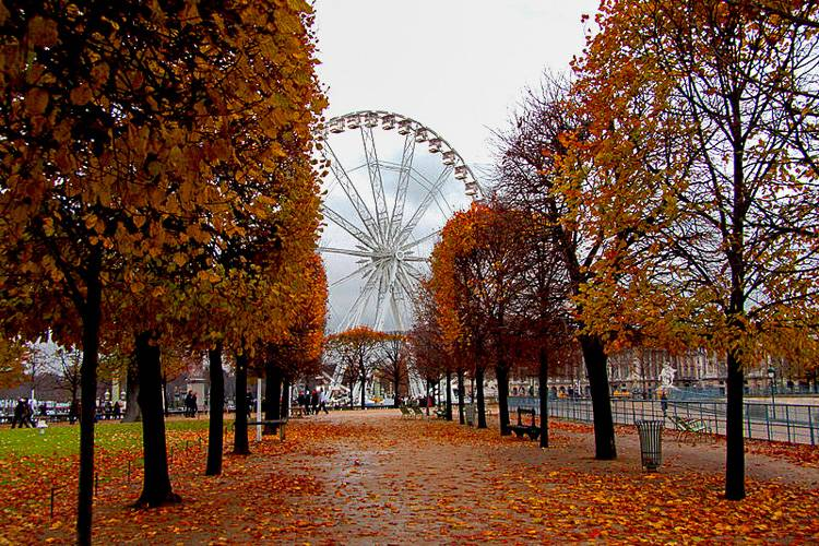 An image of a famous ferris wheel in Paris near one of the world's most iconic museums, the Louvre.