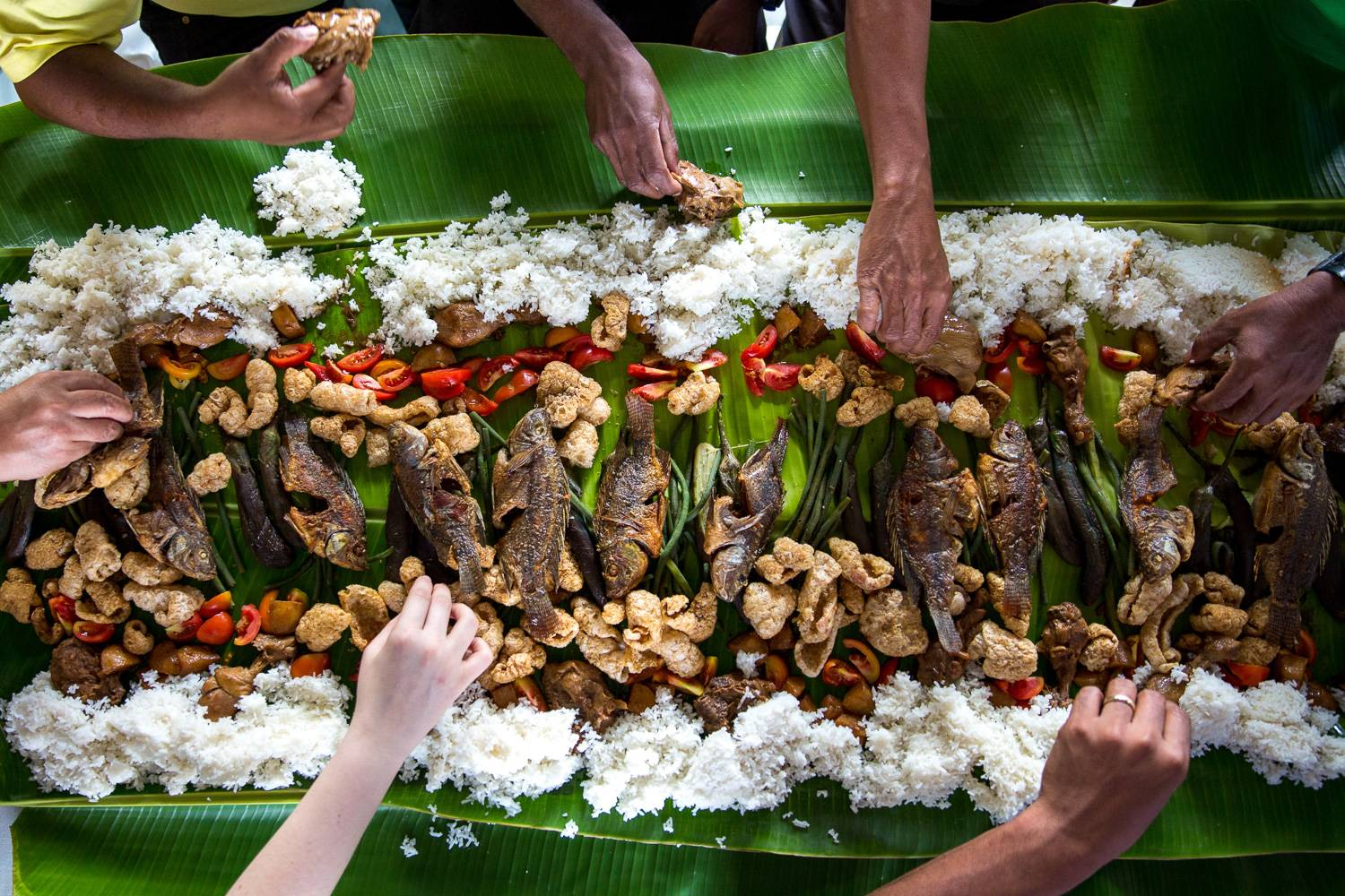 Image of overhead view of Kamayan Feast spread consisting of fried fish, rice, pig skin, and tomatoes, on top of a bed of rice.