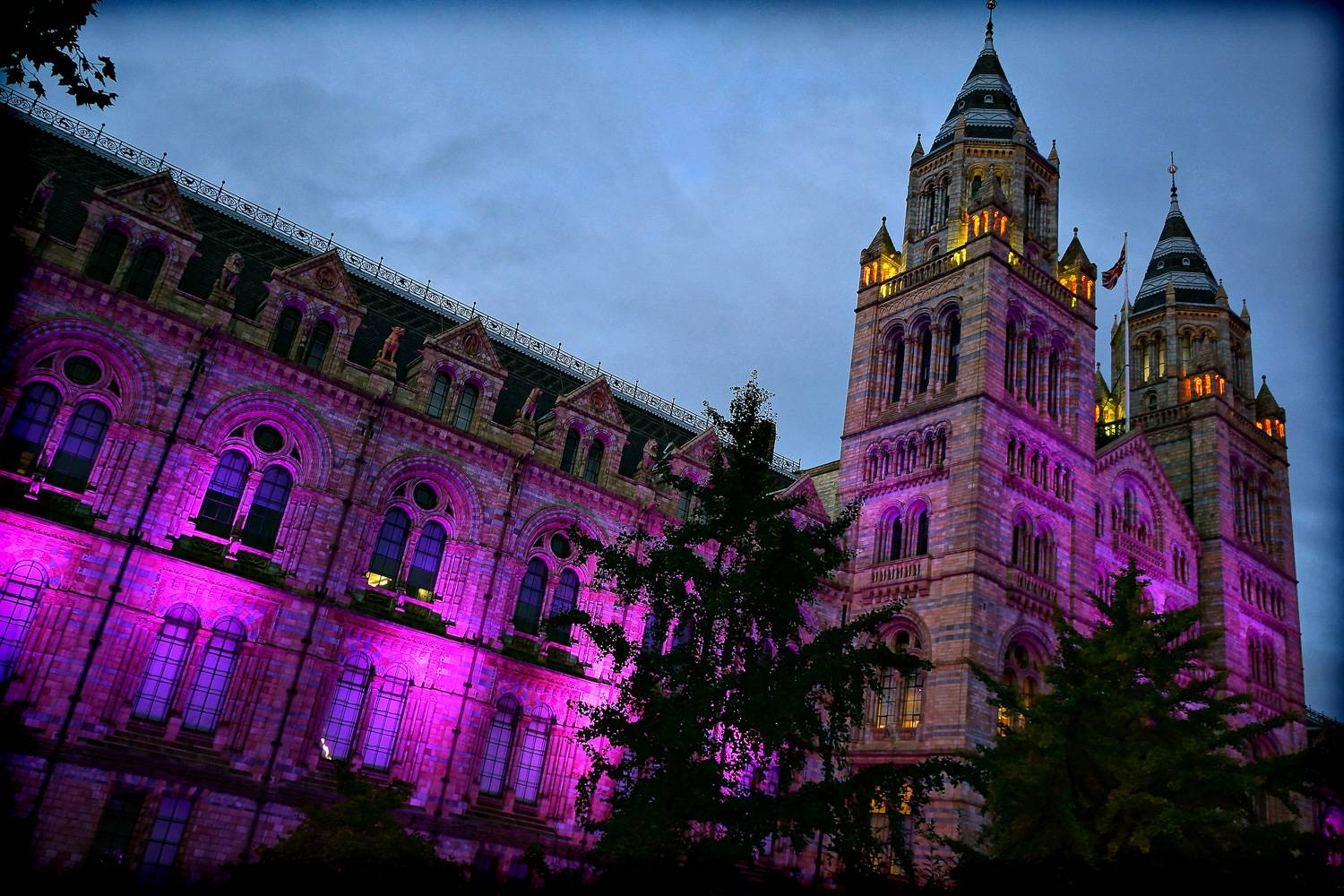Image of the outside of London's Natural History Museum lit up with purple lights.