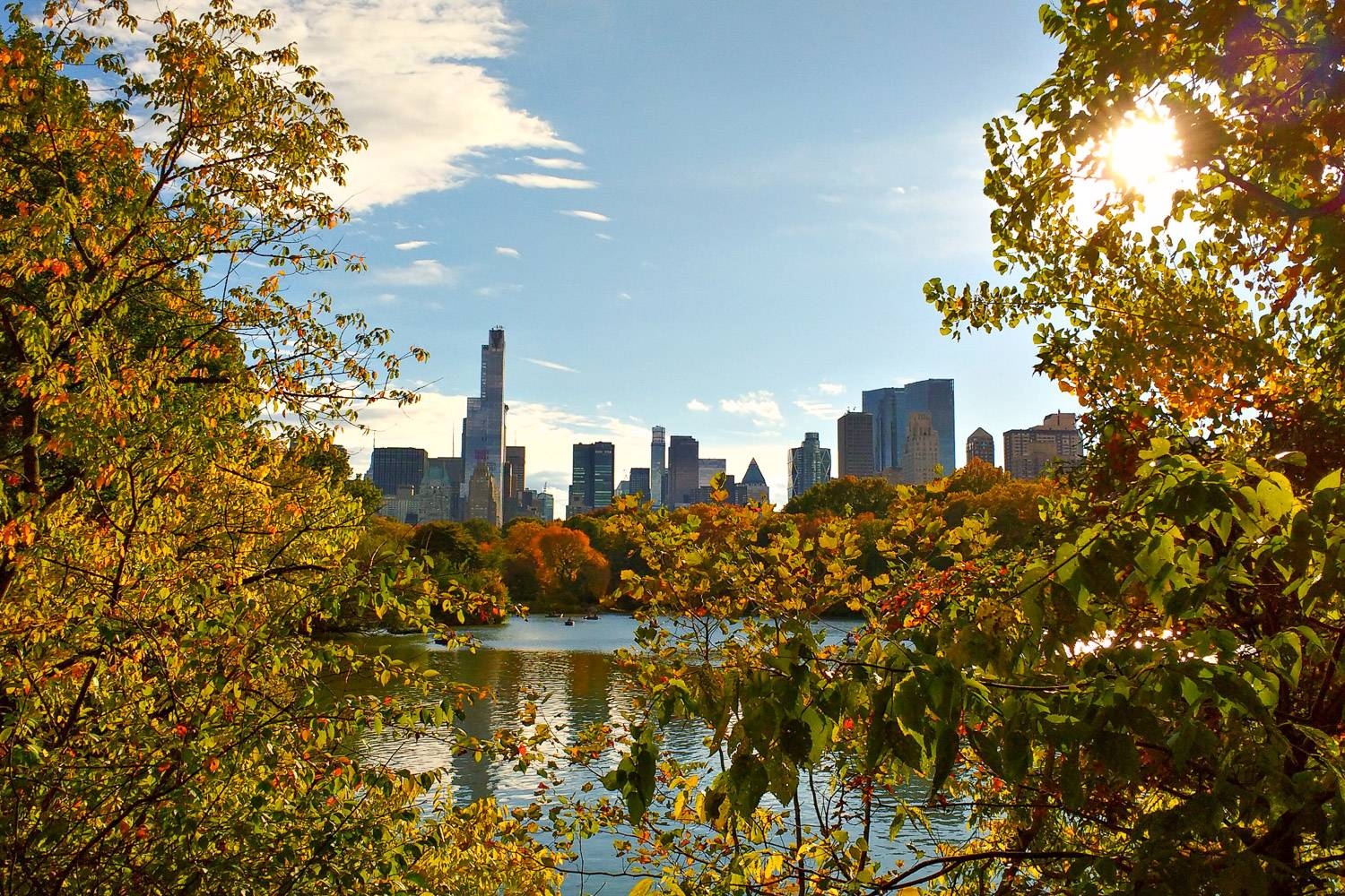 Image of Central Park with fall foliage on tress and pond with NYC skyline in the background