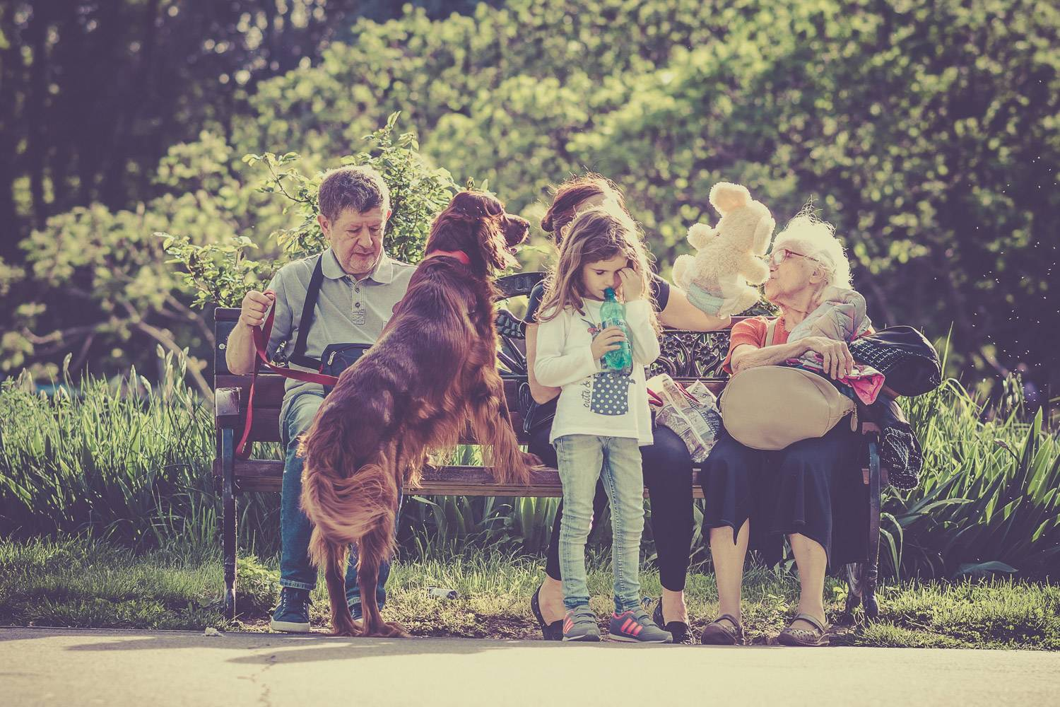 Image of a family sitting on a park bench with a child, a dog and an elderly woman