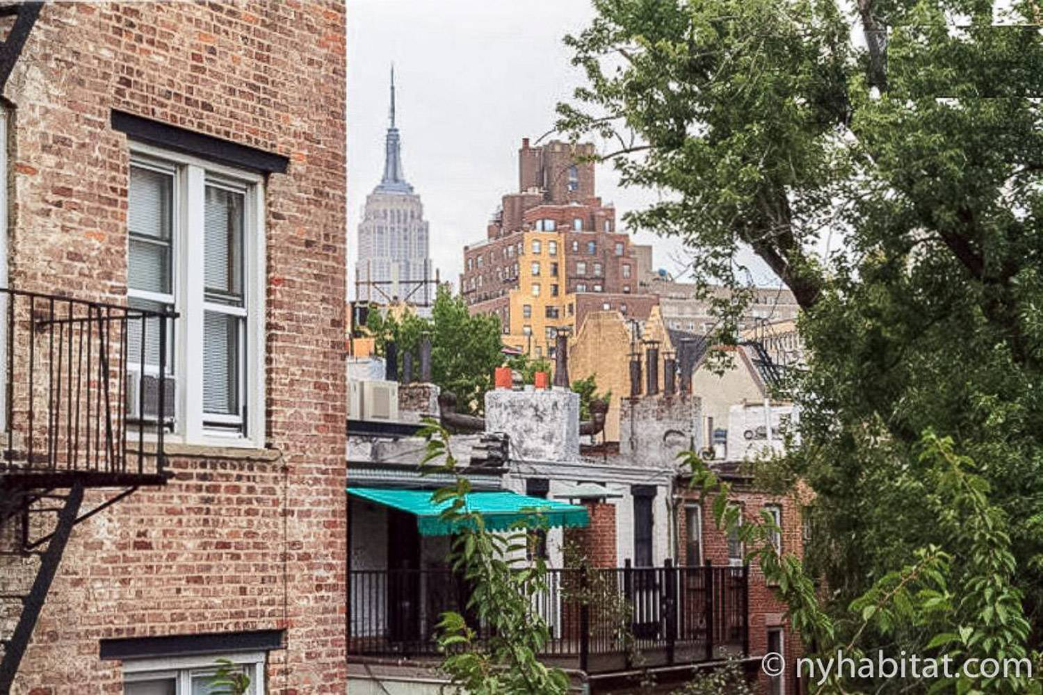 Image of tree and brick buildings and rooftops with Empire State Building in background