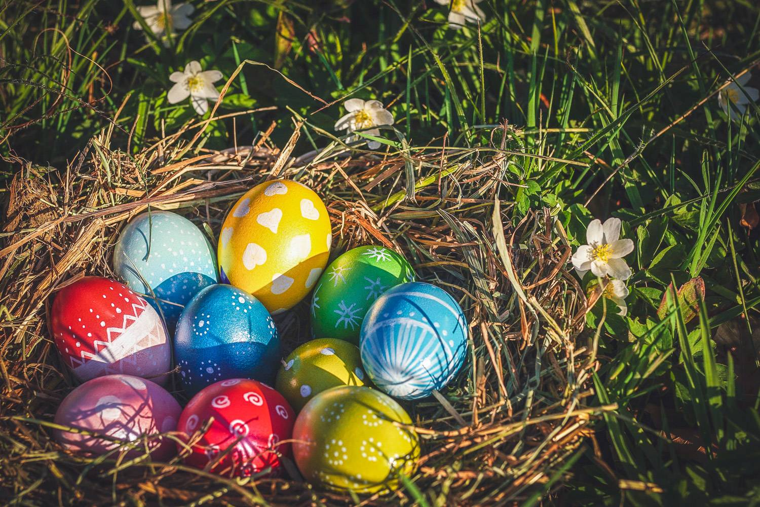 Image of a nest on the grass containing chocolate Easter eggs