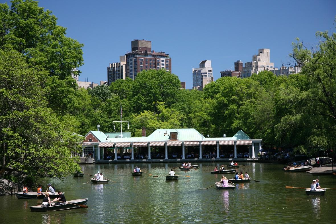 Bild vom See im Central Park mit Ruderbooten und dem Loeb Boathouse im Hintergrund.