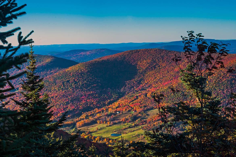 Bild von herbstlichen Farben im Catskills Gebirge.