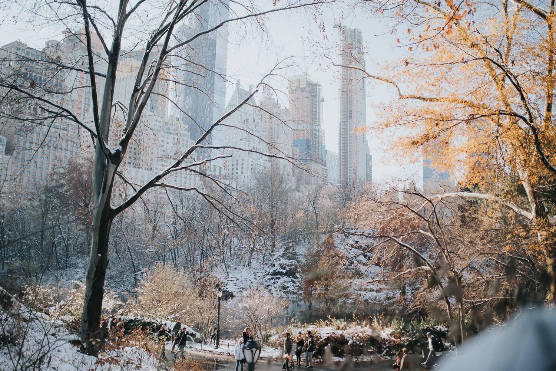 Foto des Central Parks und der Skyline der Stadt nach Schneefall.