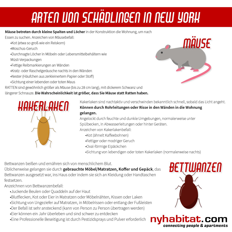 New York Habitat-Infografik mit Informationen zur Identifizierung von Mäusen, Kakerlaken und Bettwanzen.