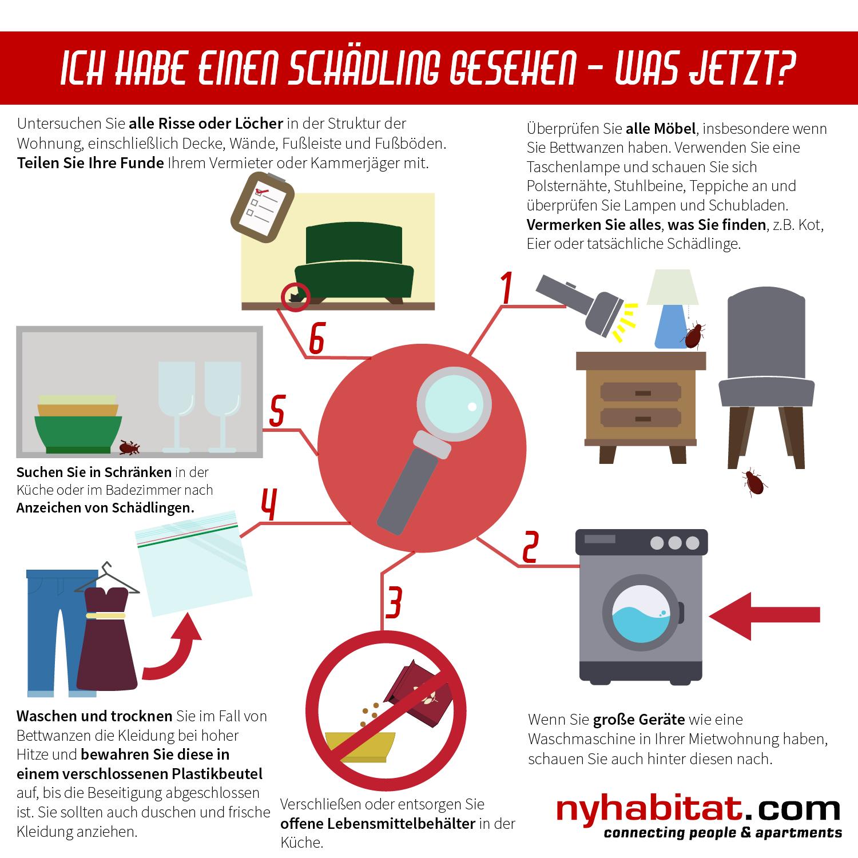 New York Habitats Schaubild zeigt sechs praktische Tipps für Mieter, die Mäuse, Kakerlaken oder Bettwanzen in Ihrer Wohnung entdeckt haben.