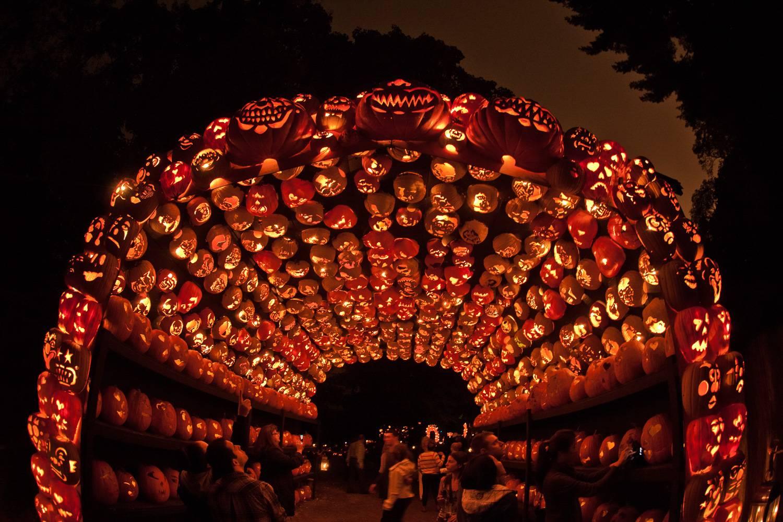 Bild von leuchtenden Jack o' Lanterns, die am Great Jack o' Lantern Blaze in New York einen Bogen bilden.