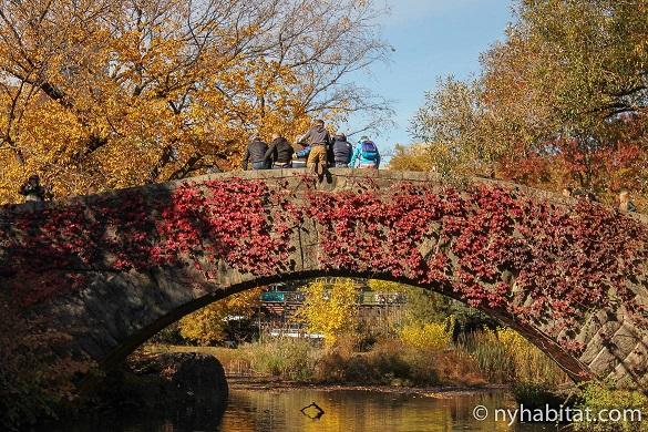 Bild von einer Gruppe von Menschen, die auf einer Brücke im Central Park im Herbst für ein Foto posieren.