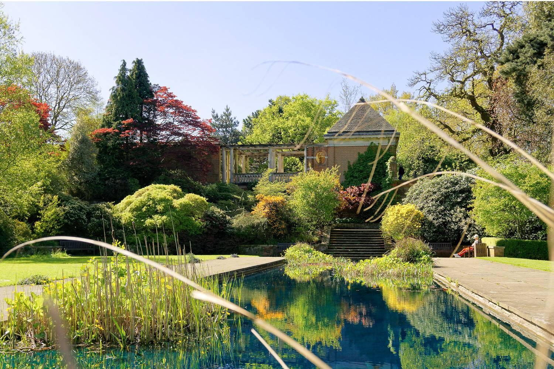 Bild des Gartens und der Laube in Hampstead Hill.