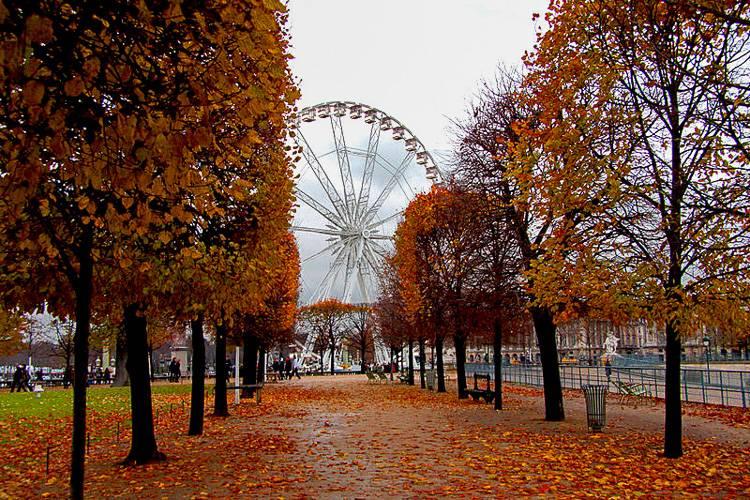 Ein Bild eines berühmten Riesenrads in Paris in der Nähe eines der berühmtesten Museen der Welt, dem Louvre.