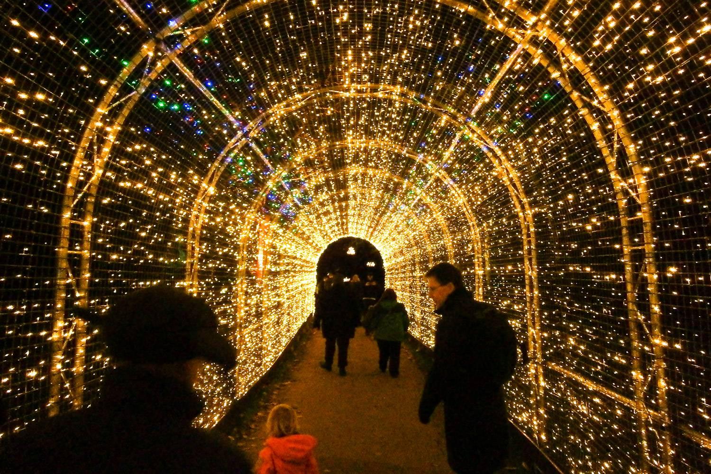 Ein Bild von tausenden hell leuchtenden Lichtern für eine Weihnachtsfeier in Kew Gardens.