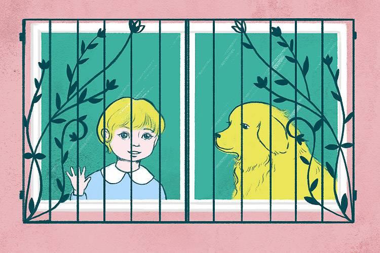 Infografik über Fenstersicherheitsvorschriften für Kinder