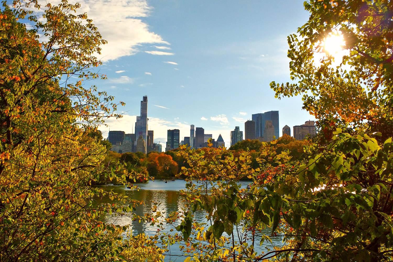 Bild des Central Parks mit Herbstlaub auf den Bäumen und einem Teich mit der New Yorker Skyline im Hintergrund