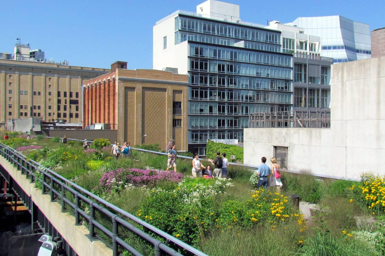 Bild der hochgelegenen Bahnschienen, die mit Pflanzen und Blumen bepflanzt sind und so Manhattans Highline Park erschaffen