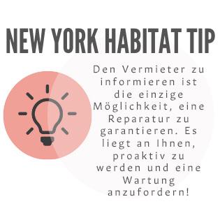 Tipp-Infografik von New York Habitat, die Mieter dazu ermutigt, Ihre Wohnung zu inspizieren und Ihren Vermieter zu informieren.