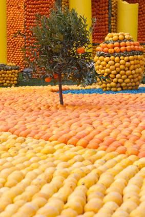 Ein saftiges Leben in Menton während des Zitronenfestivals