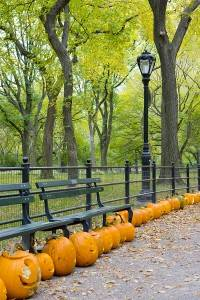 New York zu Halloween