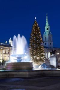 Trafalgar Square zu Weihnachten