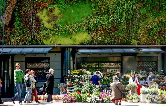Bild des Lebensmittelmarktes Les Halles in Avignon. Bild von Marta Favro.