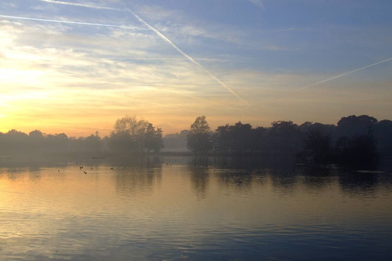 Bild des Richmond Park