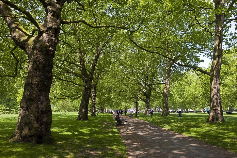 Bild vom Green Park