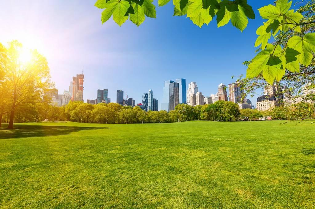 Der grüne Rasen im Central Park hebt sich von der dramatischen Skyline ab.