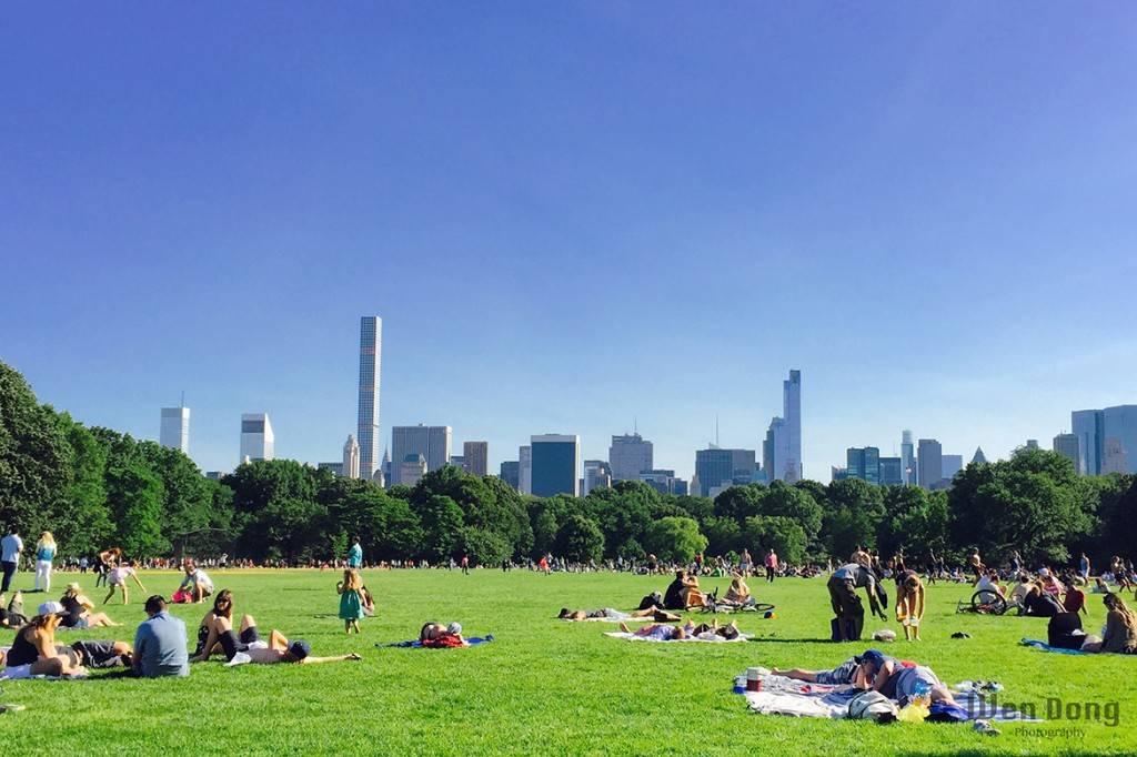 Bild des Central Parks