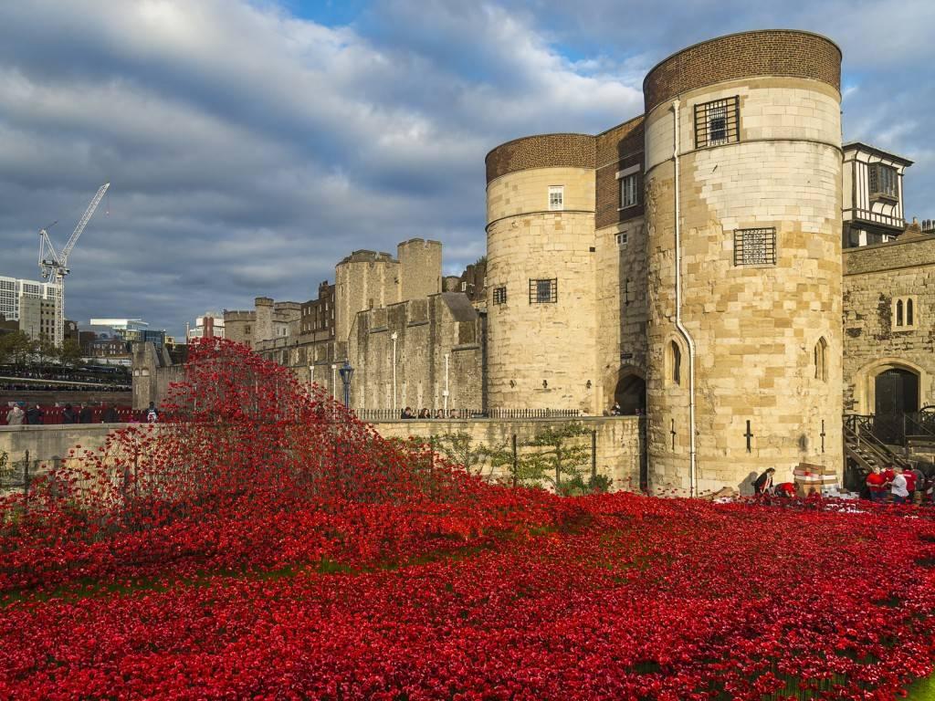 Bild des Tower of London, der für den Armistice Day geschmückt ist