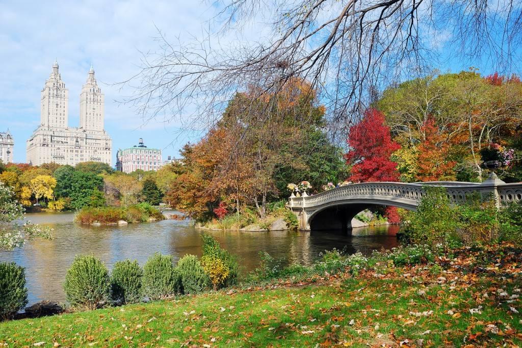 Bild vom Central Park