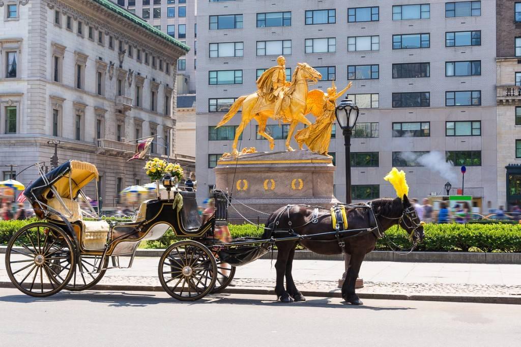 Bild einer Pferdekutsche