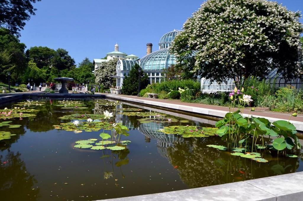 Bild einer Kunstausstellung im Brookly Botanic Garden.